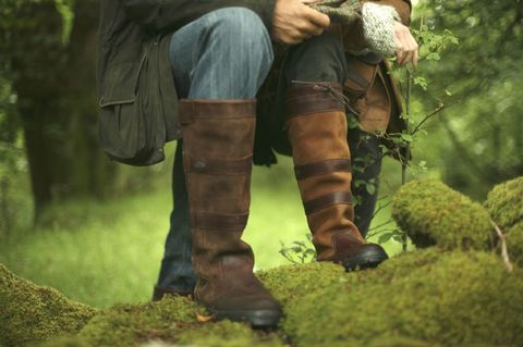 Dubarry Galway walnut en brown